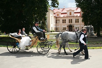 Maxmilian Lifestyle Resort - Chateau wedding